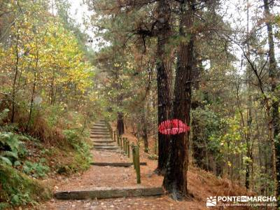 Reserva de la Biosfera Urdaibai - San Juan de Gaztelugatxe;calzado para senderismo zapatos para send